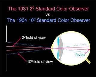 Standard Observer